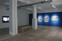 02_Carolee-Schneemann-Water-Light-Water-Needle-2014-Hales-Gallery-view-IV-photograph-by-Charles-Robinson-courtesy-of-Hales-Gallery-copyright-Carolee-Schneemann